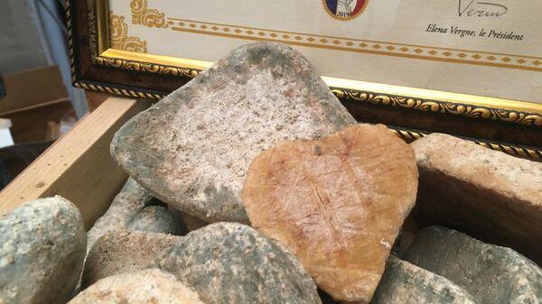 Сыры из Масловки на сырном фестивале в Музее Москвы
