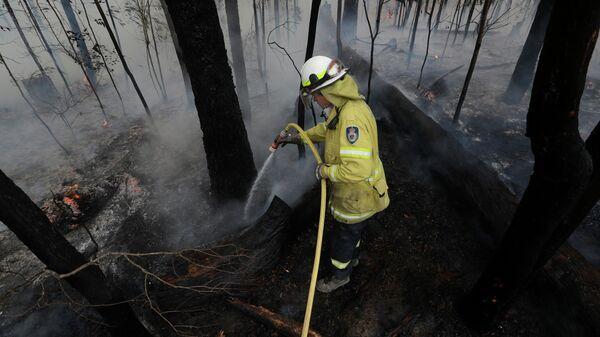 Пожарный среди сгоревшего леса в Австралии
