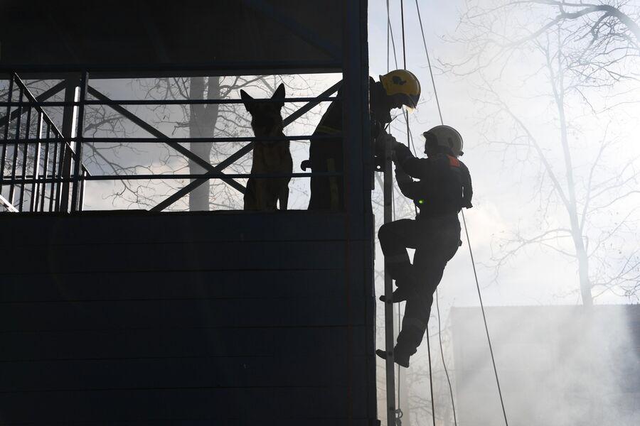 Участники во время отработки навыков верхолазания на учениях добровольцев-пожарных в Подмосковье.