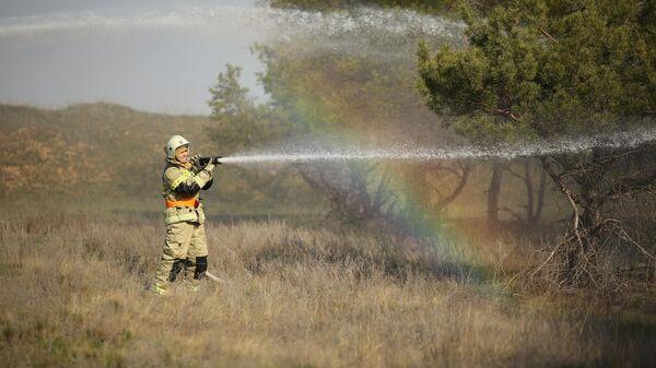 Сотрудник пожарной службы