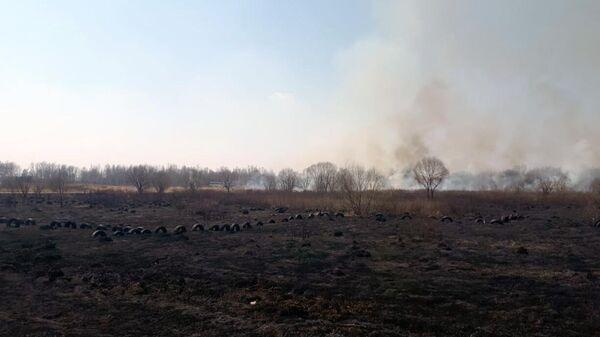 Пожар на месте крушения легкомоторного самолета в Хабаровском районе
