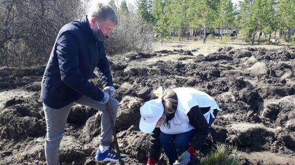 Участники акции Сад памяти высадили 10 миллионов деревьев