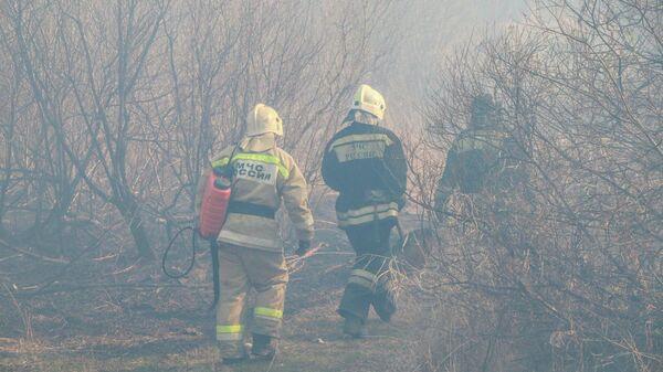 Курганские пожарные остановили огонь