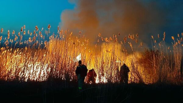 Пожар в Азовском районе Ростовской области