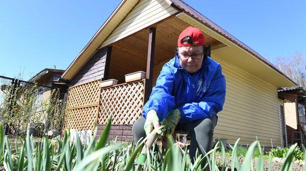 Женщина, находящаяся на самоизоляции из-за коронавируса на даче, пропалывает грядку с чесноком на садовом участке СНТ Березка