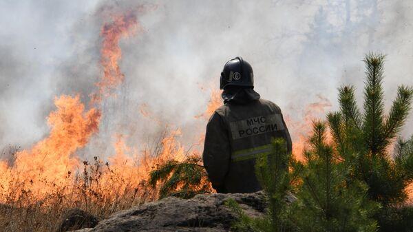 Сотрудник пожарной службы МЧС России во время тушения природного пожара