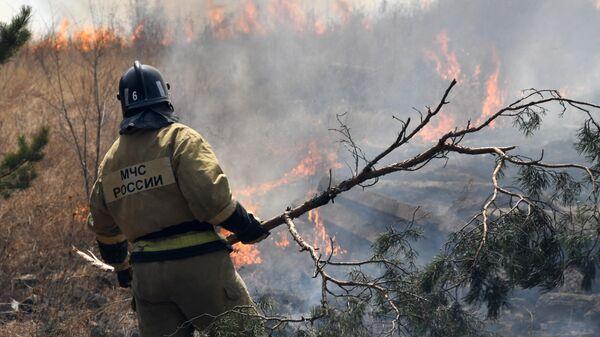 Сотрудник пожарной службы МЧС РФ
