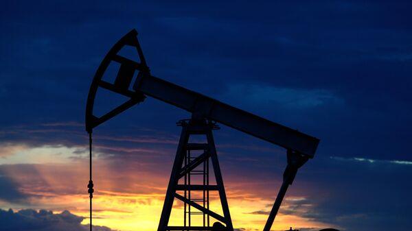 Нефтяная качалка около Ямашинского сельского поселения в Республике Татарстан