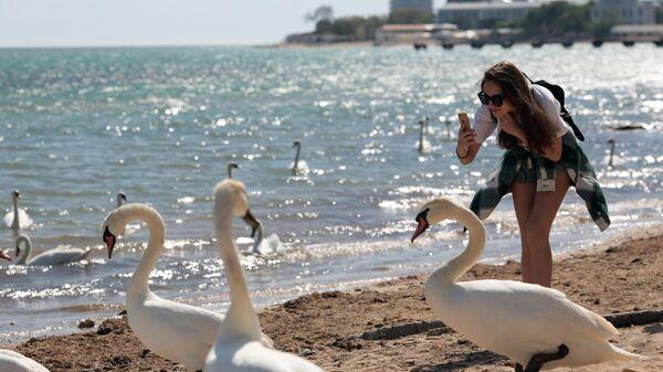 Девушка фотографирует лебедей на пляже в Евпатории