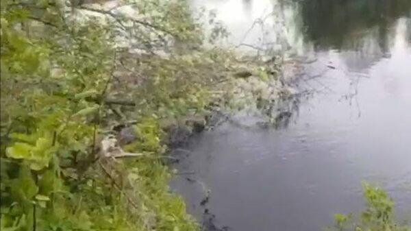Под Псковом обнаружено тело пропавшей 3-летней девочки
