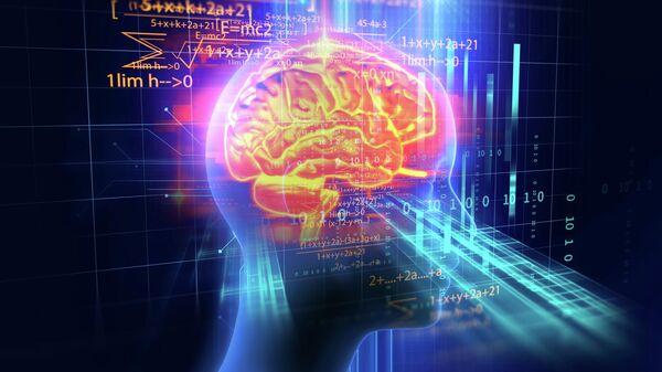 3d-модель мозга человека