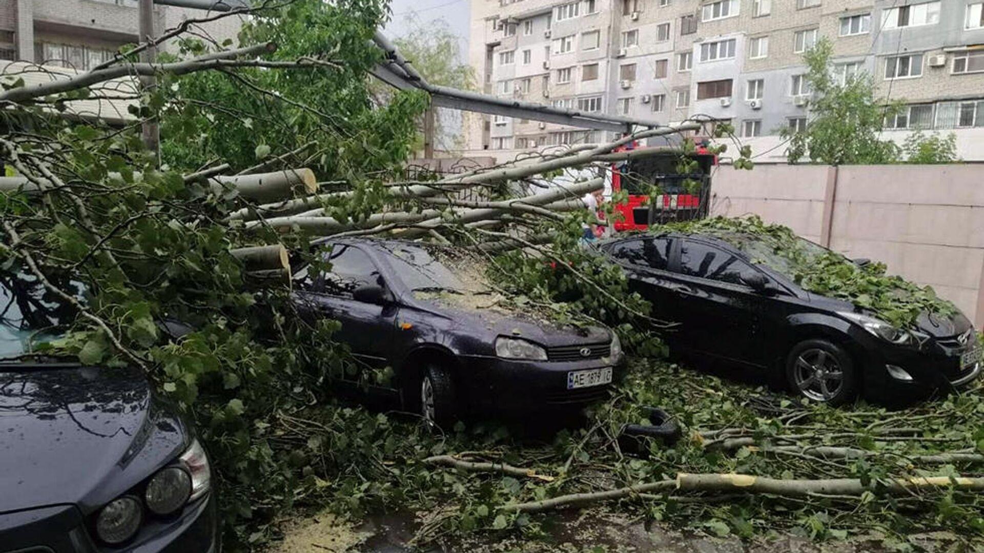 Последствия сильного ветра с дождем в Днепре, Украина - РИА Новости, 1920, 11.12.2020