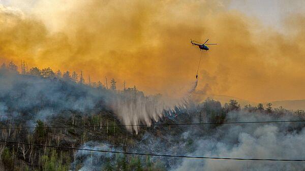 Лесные пожары на Камчатке