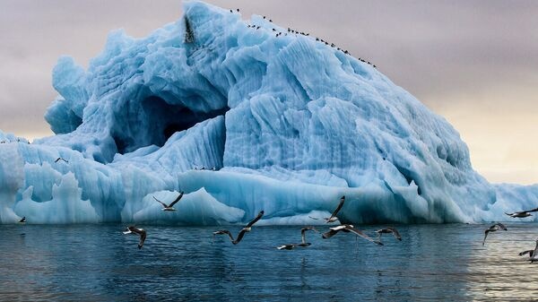 Айсберг в бухте Тихая острова Гукера архипелага Земля Франца-Иосифа