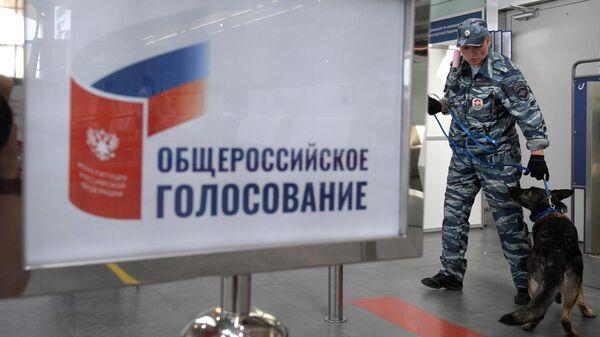 Сотрудник полиции с собакой  во время голосования по внесению поправок в Конституцию РФ на избирательном участке в аэропорту Санкт-Петербурга Пулково