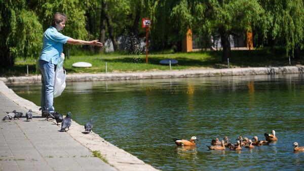 Благоустройство парка в Москве