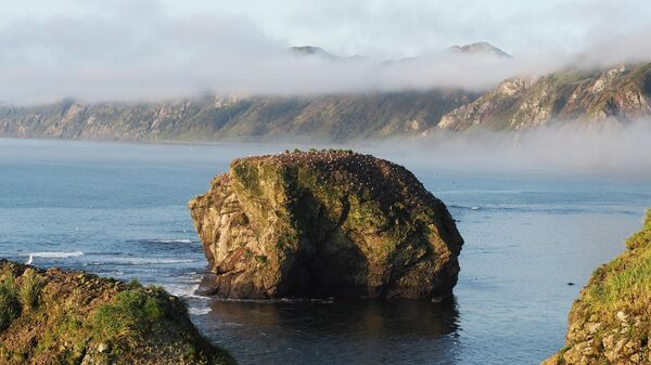 Природный парк Мыс Тихий на дальневосточных гектарах