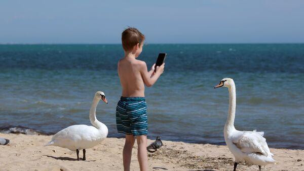 Мальчик снимает на смартфон лебедей