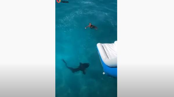 Американка чуть не попала в пасть акуле в собственный день рождения