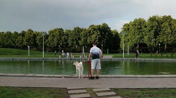 Пруд в парке 50-летия ВАЗа в Тольятти