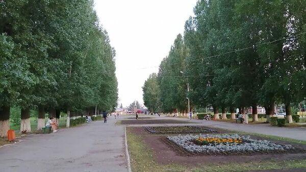 Одна из аллей в Центральном парке Тольятти
