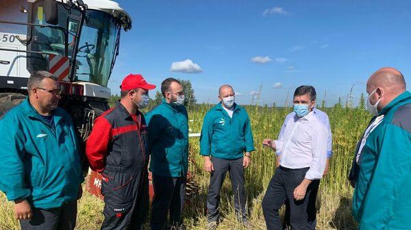 Губернатор Ивановской области Станислав Воскресенский на уборке урожая технической конопли