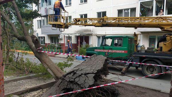 Ликвидация последствий тайфуна Майсак в Приморском крае
