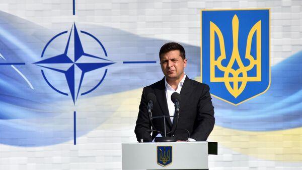 Президент Украины Владимир Зеленский на церемонии открытия военных совместных военных учений Украины и стран НАТО Rapid Trident-2020 на Яворском полигоне во Львовской области