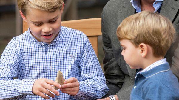 Принц Джордж держит подаренный ему зуб ископаемой акулы