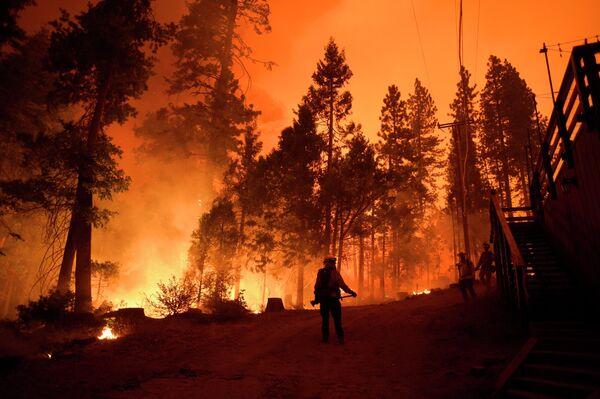 Пожарные во время тушения лесного пожара в штате Калифорния
