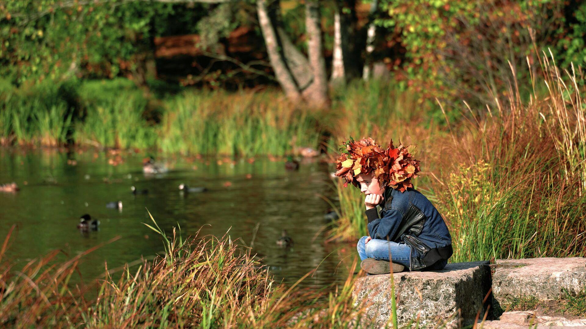Золотая осень в Ленинградской области - РИА Новости, 1920, 23.09.2021
