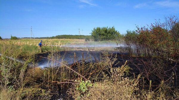 Казаки совместно с МЧС спасают леса и степи от пожаров