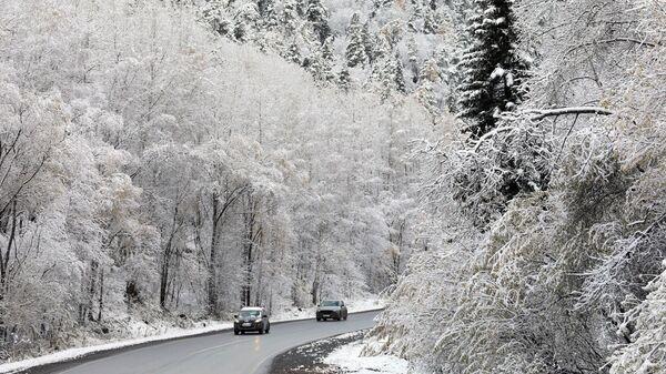 Автомобили едут по автотрассе вдоль тайги после первого снегопада в Красноярском крае. 6 октября 2020