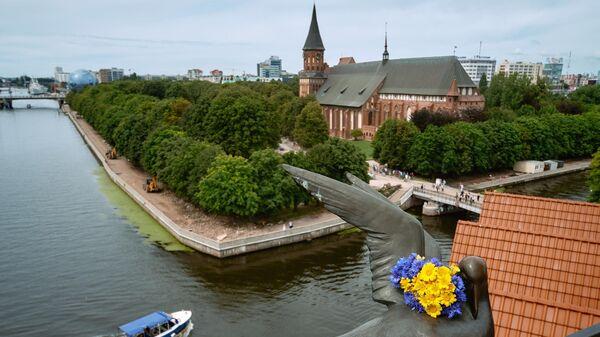 Вид на Кёнигсбергский кафедральный собор и остров Кнайпхоф (остров Иммануила Канта) в Калининграде