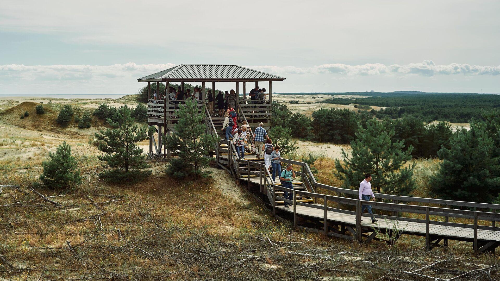 Туристы смотрят на дюны с высоты Эфа в национальном парке Куршская коса в Калининградской области - РИА Новости, 1920, 02.06.2021