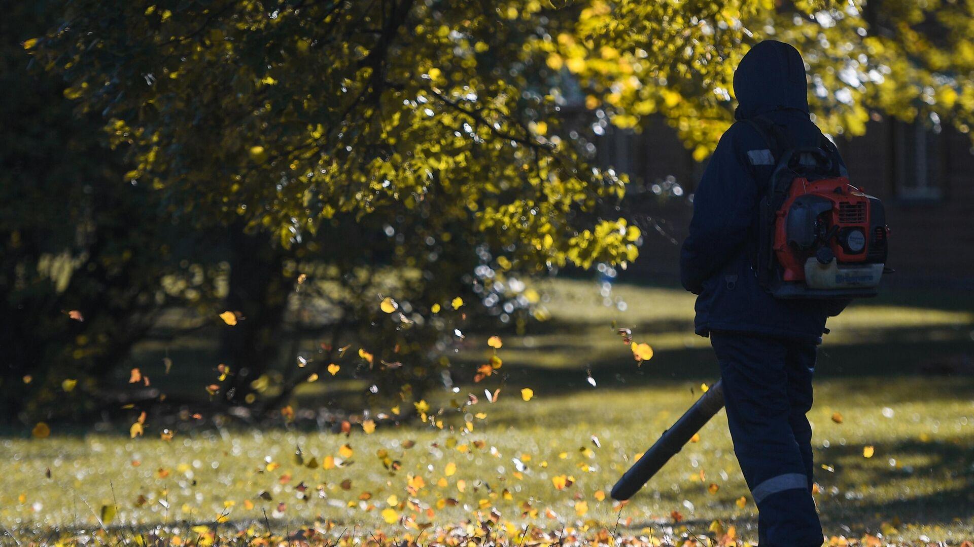 Уборка листвы в парке Царицыно в Москве - РИА Новости, 1920, 13.09.2021