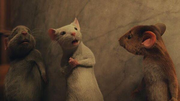 Кадр из фильма Ведьмы