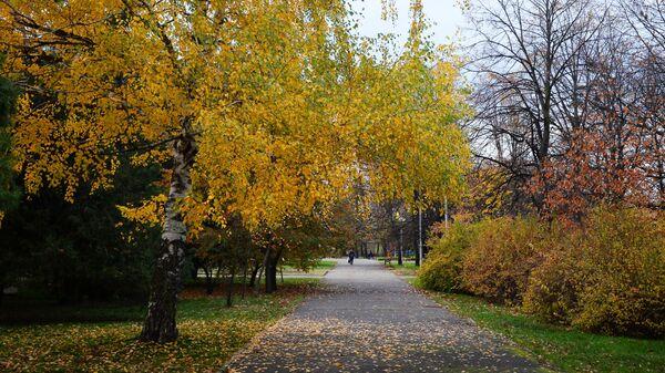 Парк в городе Майкоп