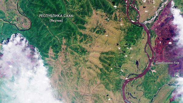 Космический снимок распространения лесных пожаров в Республике Саха (Якутия)