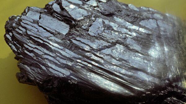 Образец породы каменного угля.