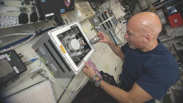 Астронавт Лука Пармитано помещает реакторы биоразработки в центрифугу на борту МКС