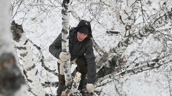 Тиктокер Алексей Дудоладов лезет на верхушку березы в деревне Станкевичи Называевского района
