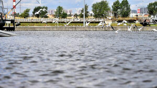 Очистка воды на Люберецких очистных сооружениях