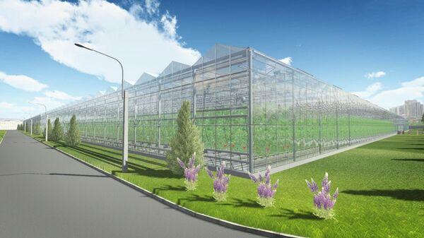Проект территории опережающего социально-экономического развития (ТОСЭР) в Кувшиново