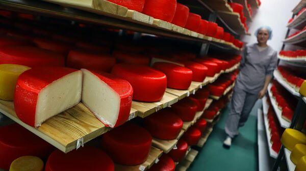 Твердый козий сыр, изготовленный в селе Надежда Ставропольского края