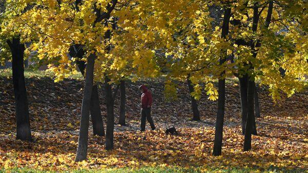 Осень в Москве