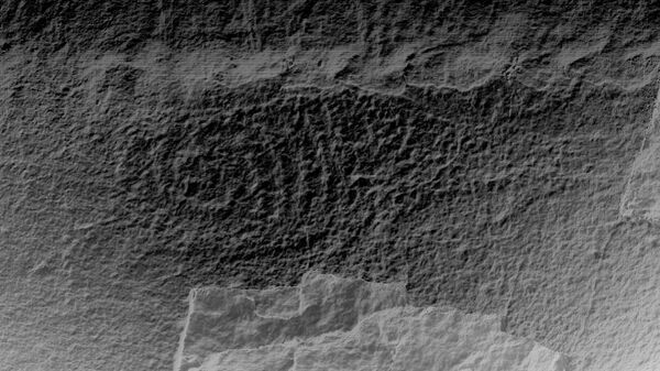 Изображение лося, выявленное в декабре 2020 среди петроглифов на реке Кия в Хабаровском крае