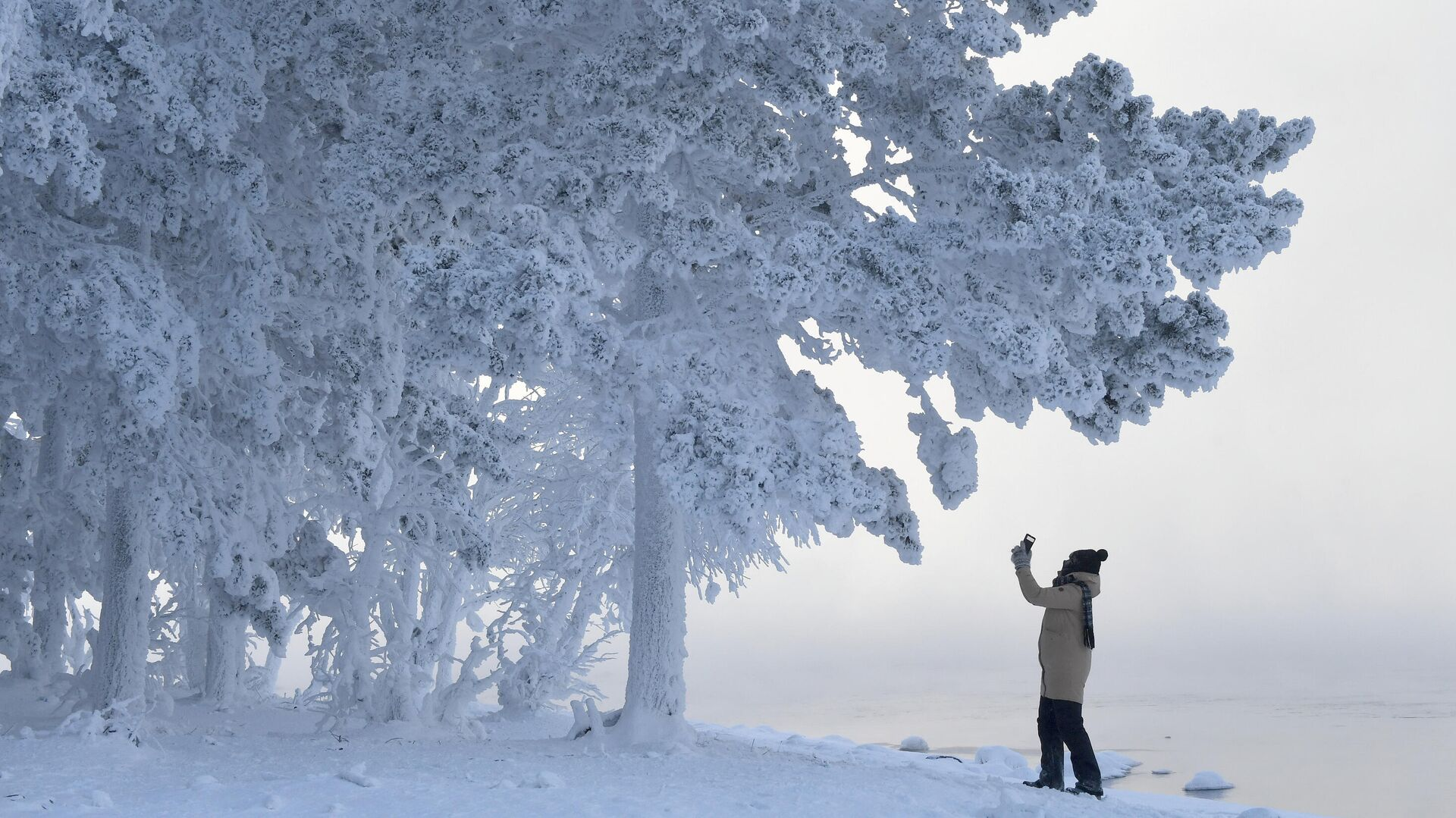 Женщина снимает на смартфон деревья в лесу на берегу Енисея в Красноярском крае в 30-градусный мороз - РИА Новости, 1920, 03.10.2021