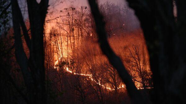 Природный пожар