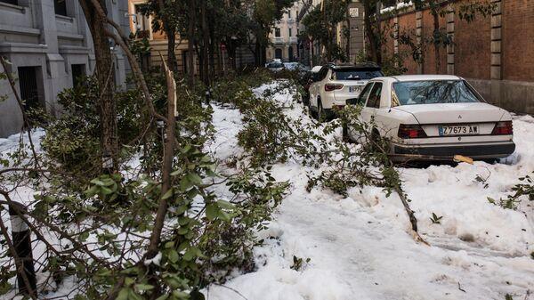 Последствия снегопада на одной из улиц Мадрида